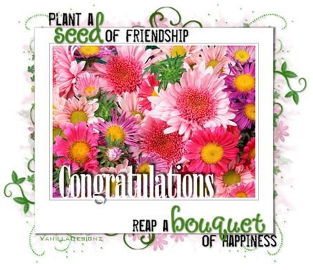congratulations_seed_of_friendship_vd-vi.jpg