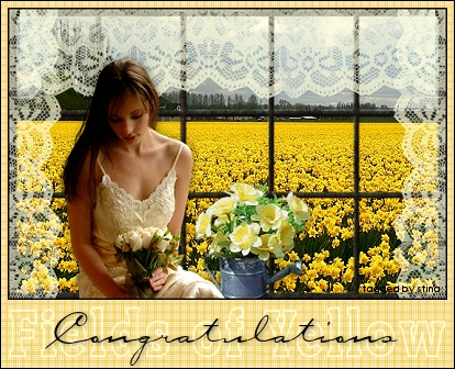 fieldsofyellow-congratulations_stina0907